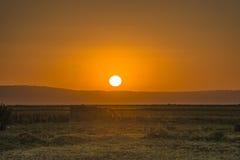 Pustynny wschód słońca fotografia stock