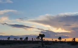 Pustynny zmierzch z chmurami Zdjęcie Stock