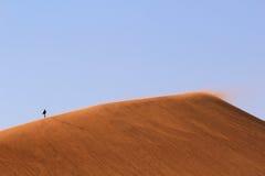 pustynnych diun krajobrazowy nanib piaska sossusvlei Fotografia Royalty Free