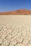 pustynnych diun krajobrazowy nanib piaska sossusvlei Obrazy Royalty Free