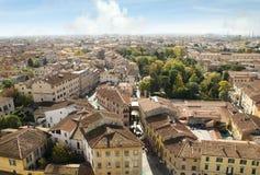 puszek loooking Pisa Fotografia Royalty Free