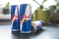 Puszki Red Bull energetyczny napój na kuchennym kontuarze Zdjęcia Royalty Free