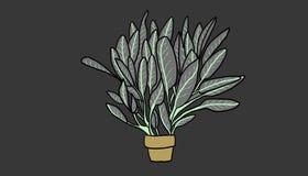 puszkująca ilustracyjna roślina Zdjęcia Stock