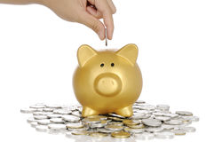 Put Coin Into Piggy Bank Royalty Free Stock Photo