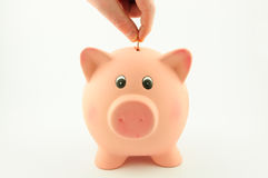 Put a coin in a piggy bank Royalty Free Stock Photo