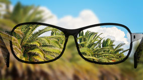 Put the glasses for the different, better view. Looking at the palms, clouds and sky. Royalty Free Stock Images