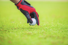 Put the golf ball. Start game by put the golf ball Stock Photos
