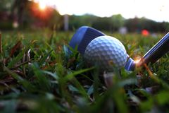 Put the iron on the golf down Beside the white golf ball In the green lawn to hit. Golf equipment in the green field/Golf equipment Many pieces in a bag stock photography