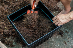 Put a jardiniere. People put compost soil a jardiniere with a red shovel Royalty Free Stock Photos