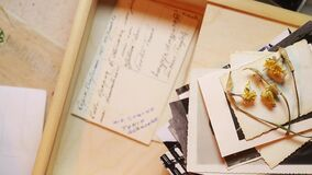 Put old photos in a box. Put old photos and postcard  with handwritten words in a wooden box  ,in the foreground yellow dried flowers on old black and white stock video