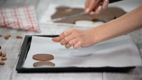 Put raw chocolate cookies on a baking tray with parchment paper, ready for bake. Put raw chocolate cookies on a baking tray with parchment paper, ready for bake stock video footage