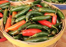 Put spicy in your life! Royalty Free Stock Images