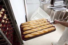 Puting fresh baked baguette bread into the rack Royalty Free Stock Photography