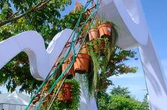 PUTRAJAYA, MALÁSIA - 30 DE MAIO DE 2016: Flores plantadas em uns potenciômetros feitos do plástico Os potenciômetros de flor que  Fotografia de Stock