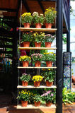 PUTRAJAYA, MALAISIE - 30 MAI 2016 : Fleurs plantées dans des pots faits de plastique Les pots de fleur accrochant ou placés sur u Photo libre de droits
