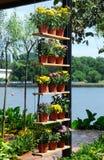 PUTRAJAYA, MALAISIE - 30 MAI 2016 : Fleurs plantées dans des pots faits de plastique Les pots de fleur accrochant ou placés sur u Photos stock