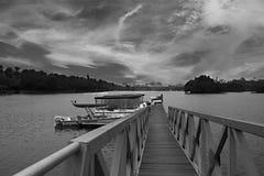 Putrajaya Wetland, Malaysia. Black and white landscape photography royalty free stock images