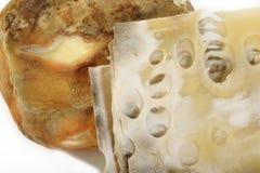 Putrefacción de la mantequilla y putrefacción del queso imagen de archivo
