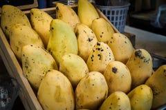 Putrefacción de los mangos foto de archivo