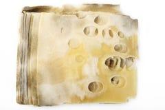 Putrefacción del queso foto de archivo