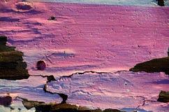 Putrefacción y pintura Imagen de archivo libre de regalías