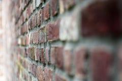Putrefazione-braune Backstein oder Ziegelwand, un muro di mattoni marrone-rosso di Ein fotografie stock