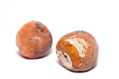 Putridly peach. Over white background Royalty Free Stock Photography