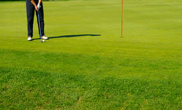 The putt. Golf course green with golfer putting Stock Photos