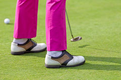 Putt on golf course. Golfer with pink trousers is lining up a putt Royalty Free Stock Images