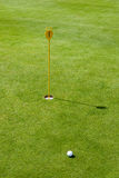 Putt at golf course with flag and green. Putt at golf course with golf ball, hole and flag on fresh green Royalty Free Stock Image