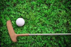 Putter and Golf ball on green grass Stock Images