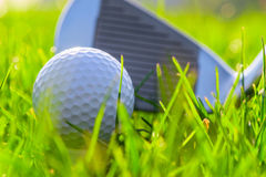 Putter and golf ball Royalty Free Stock Image