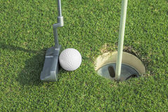 Putter puts a golf ball to hole. On green of golf course Stock Images