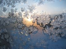 Putterns na janela congelada imagem de stock