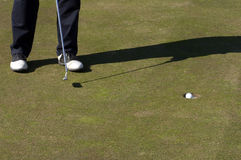 Putting. Golfer putting royalty free stock images