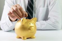 Putting coin into piggy bank Royalty Free Stock Image