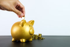 Putting coin into piggy bank Stock Photos