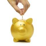 Putting coin into piggy bank Stock Photos