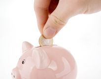 Putting coin into piggy bank isolated. Hand putting one euro coin into piggy bank isolated on white Stock Photography
