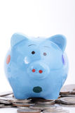 Putting coin to Piggy bank Stock Images
