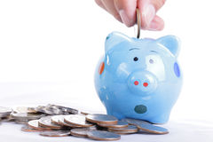 Putting coin to Piggy bank Stock Image