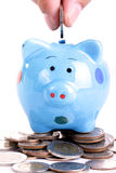 Putting coin to Piggy bank Stock Photography