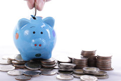 Putting coin to Piggy bank Royalty Free Stock Photo