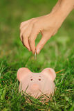 Putting coin to the piggy bank Stock Photography