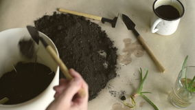 Putting dirt into pot stock footage