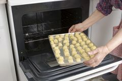 Putting dough with cheese in oven (Recipe series) Royalty Free Stock Images