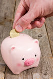 Putting fifty cent  into the piggy bank Royalty Free Stock Images