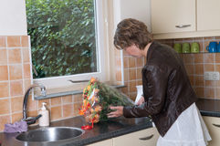 Putting flowers in a vase Stock Image