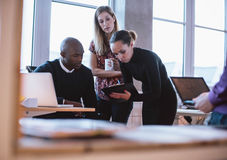 Putting forward some suggestions. Female executive showing proposal on clipboard to her colleagues. Multiracial young people analyzing new business plan in royalty free stock photo