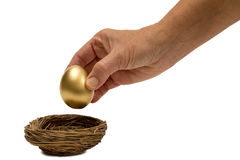 Putting Golden Egg In Nest. Putting the golden egg into the nest. Isolated on white with shadow around base of nest royalty free stock photography